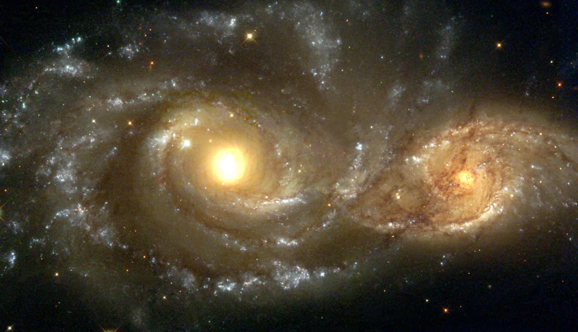 Growing black holes: accretion and mergers